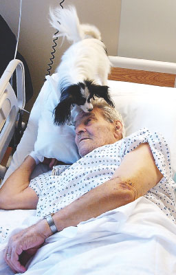 Dogs bring health dose of affection to hospital